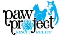 Paw Project NC