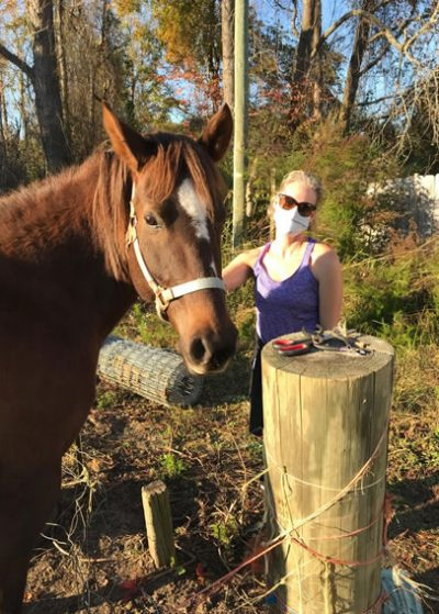 Volunteer-horse